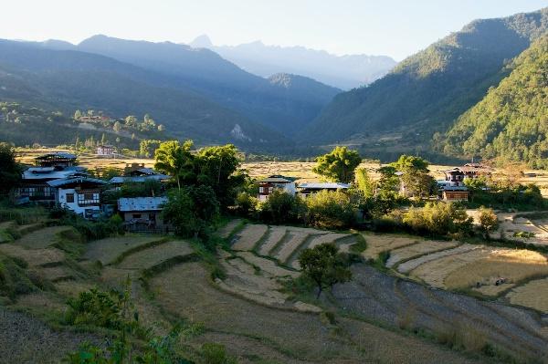 Travel Photography Tips Landscapes Dried Up Rice Paddy Landscape in November  Punakha Bhutan  Copyright 2013 Ralph Velasco