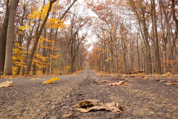 McEnaney road
