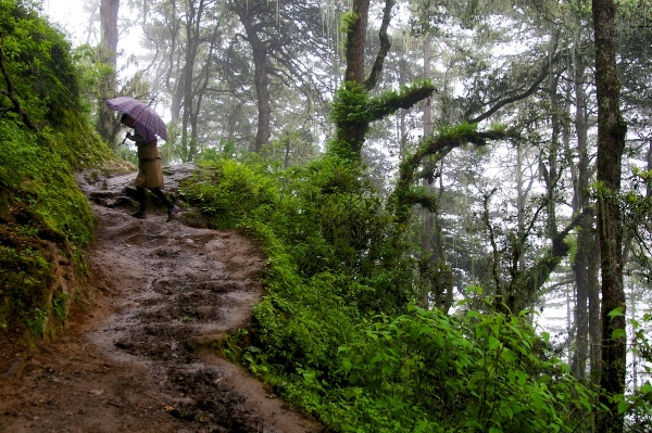 Travel Photography Tips - Storytelling  Sangay Walking Up Trail to Tiger s Nest Monastery  Paro Bhutan  Copyright 2013 Ralph Velasco