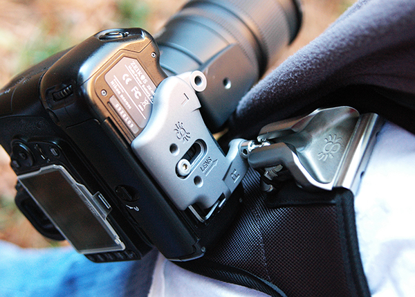 Spider Camera Holster Review