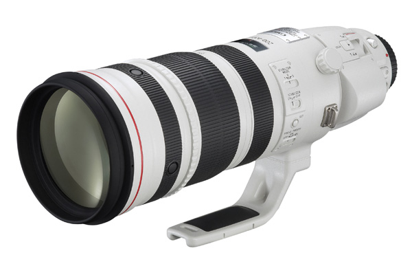 Canon 200-400mm zoom lens
