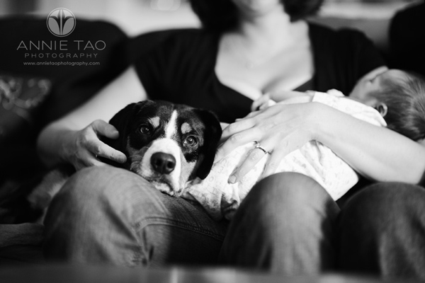 Annie-Tao-Photography-Lifestyle-Newborn-Photography-article-12b