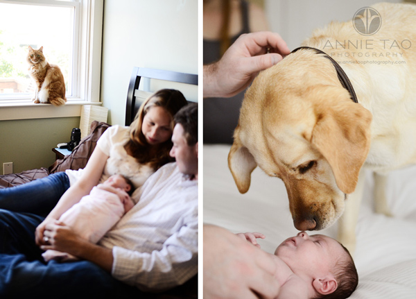 Annie-Tao-Photography-Lifestyle-Newborn-Photography-article-13