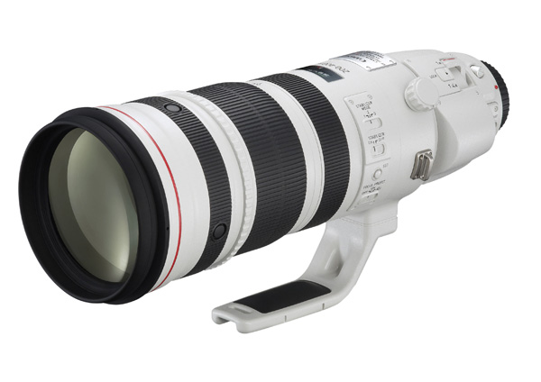 Canon 200-400mm zoom