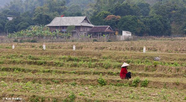 Kav-Dadfar-People-In-Photos-Vietnam