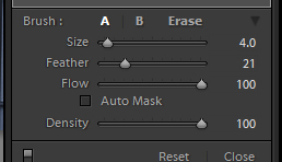 Size the brush using the Size slider