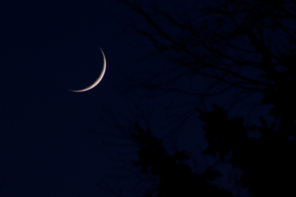 moon, moon photography, crescent moon, how to, crescent, craters
