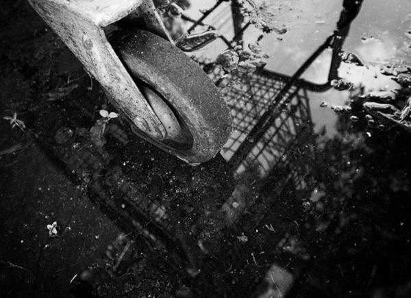 Abandoned Cart Ricoh GRD IV