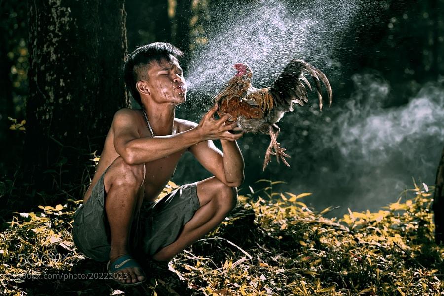 Photograph Jalak Lenteng  by Amir  Rodof on 500px