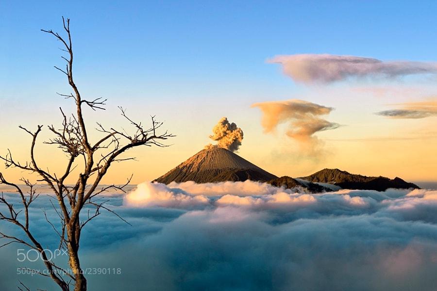 Photograph Heaven on Earth by Hartono Hosea on 500px