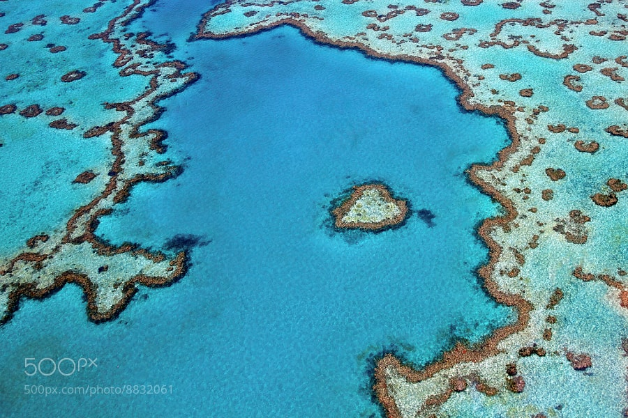 Photograph Heart Reef by Tanya Puntti on 500px