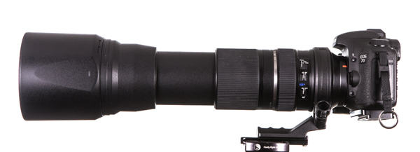 Tamron SP 150-600mm extend to 600 mm