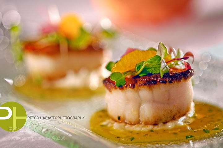 Photograph Scallops by Peter Harasty on 500px