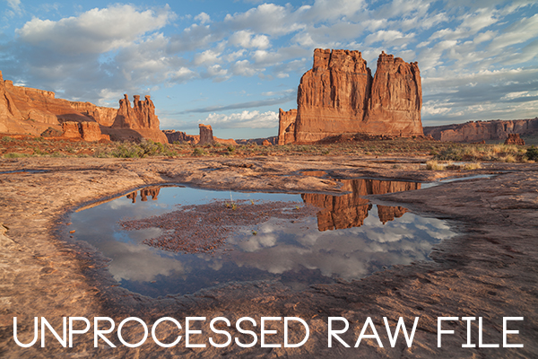 Unprocessed RAW file