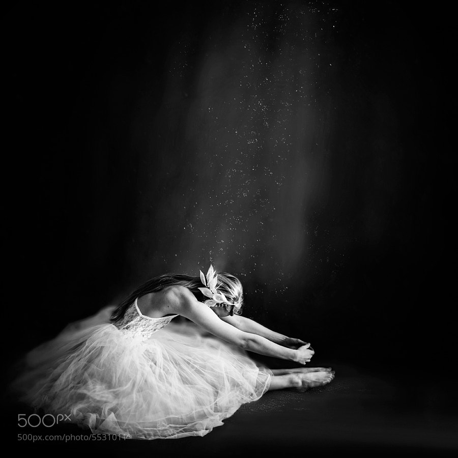 Photograph Ballerina III by Vanessa Paxton on 500px