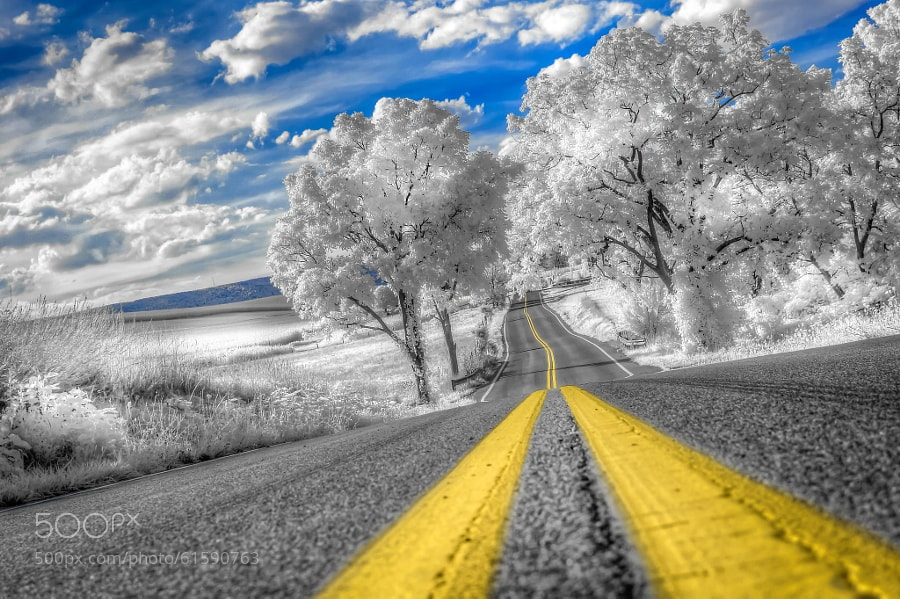 Photograph Road to Home by Ethan Shox on 500px