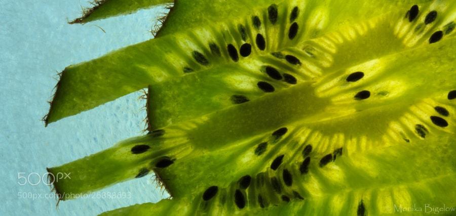 Photograph 90/365  How Many Ways Can You Slice a Kiwi? by Monika Bigelow on 500px
