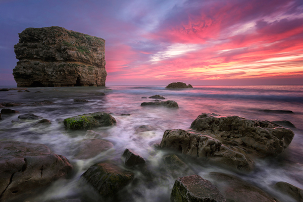 Pink seascape