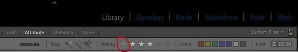 Lightroom FilterBar Rating 03a
