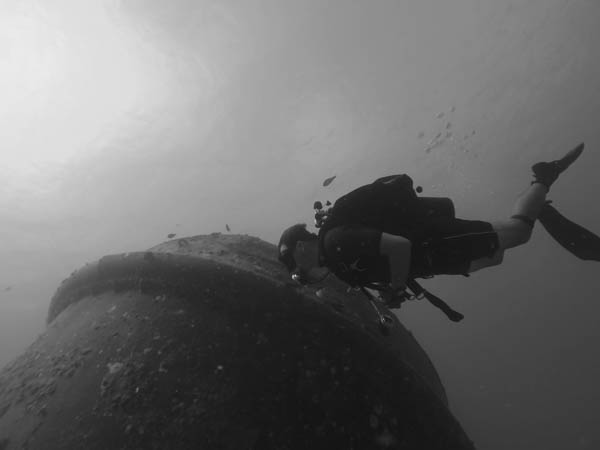Bow and diver