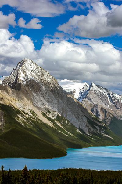 Bald Hills  Maligne Lake  Jasper National Park  Alberta  Canada