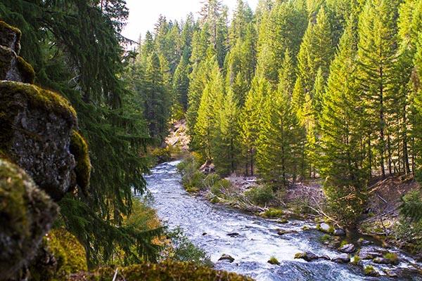 Image 5  River