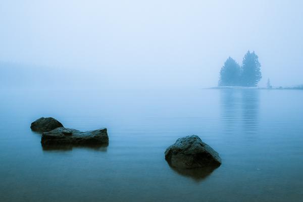 Silence  Banff National Park  Alberta  Canada