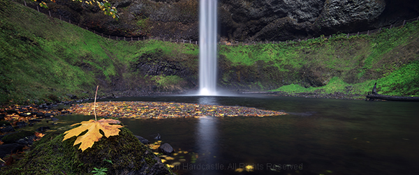 Not using a polarizer in landscape photography at Silver Falls State Park