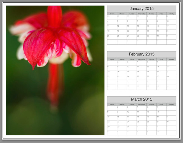 Create a calendar in the Lightroom Print module