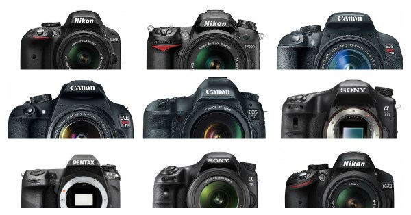 The 19 Most Popular DSLRs Among our Readers
