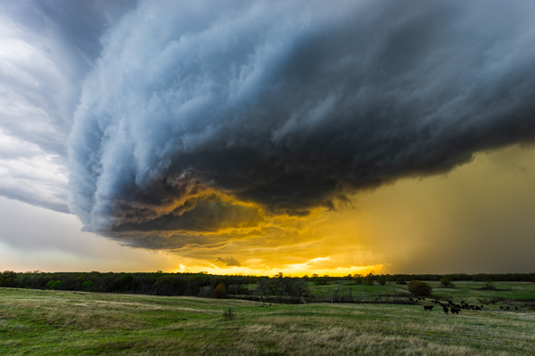 Shelf Cloud Over Ardmore, Oklahoma