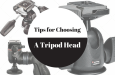 Tips for Choosing a Tripod Head