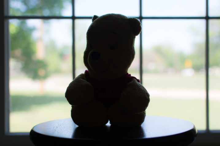 bear-underexposed