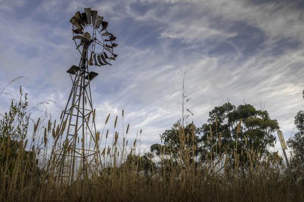 image2-inverleight-windmill-leannecole