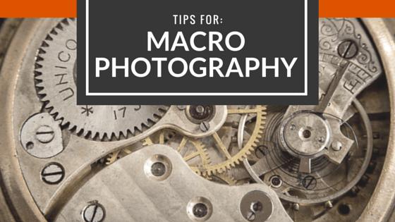 Macro Photography Tips – Video Tutorials