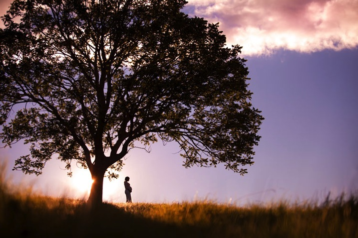 perfect silhouette photography woman by a tree