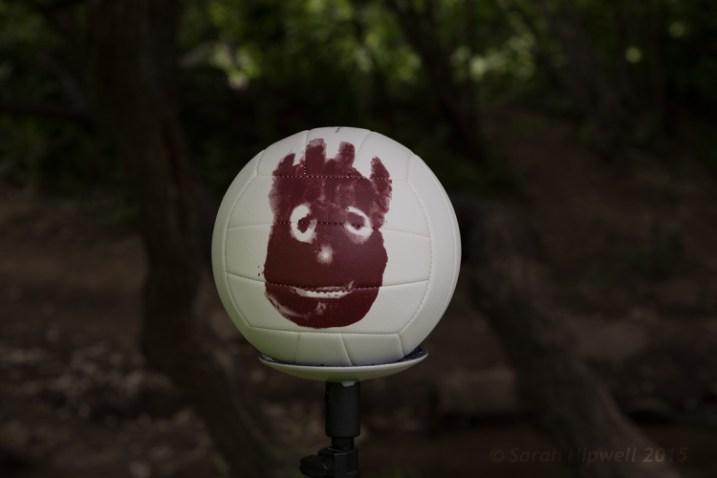 Wilson-sun-dapple-no-flash