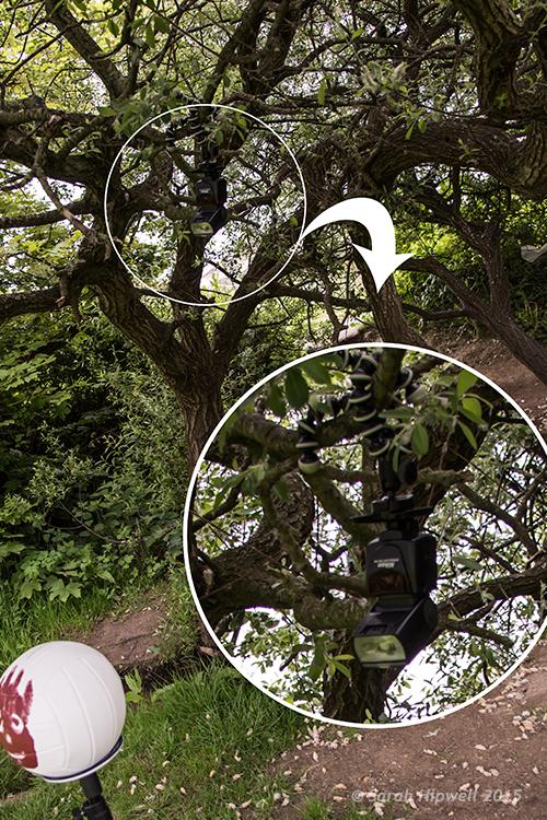 flash-in-tree