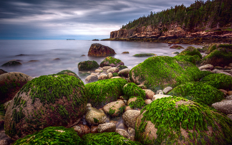 Seascape features example -  Green rocks at Acadia