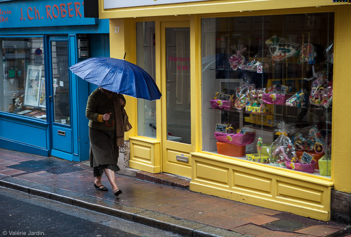 Choosing a color theme then you are out on a photo walk can be a fun project. Here my color theme was blue!