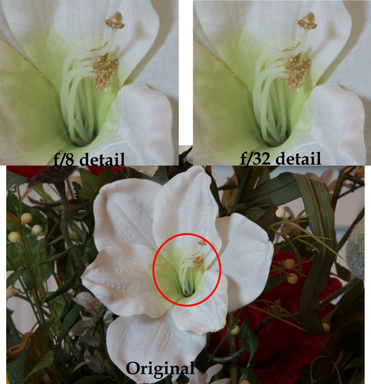 Example of photos taken with large and small apertures to show the effect of diffraction when using a small aperture on your lens