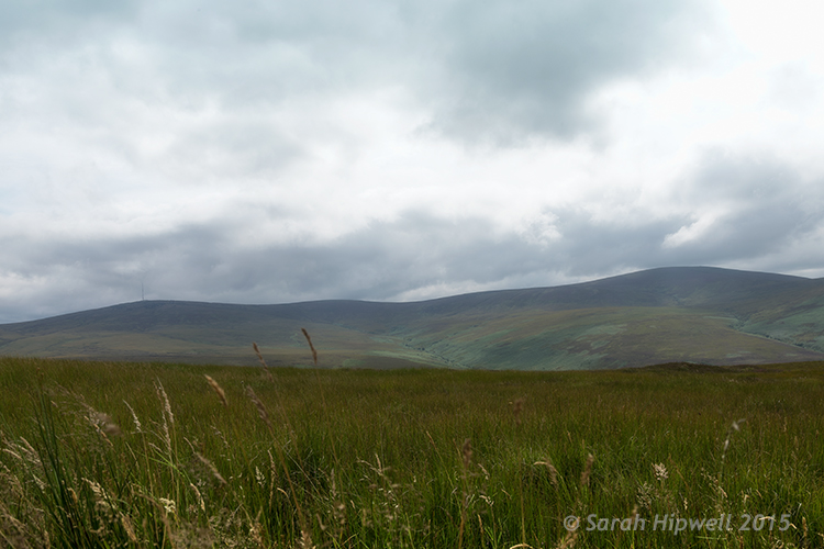 Landscape shot of the Dublin mountains
