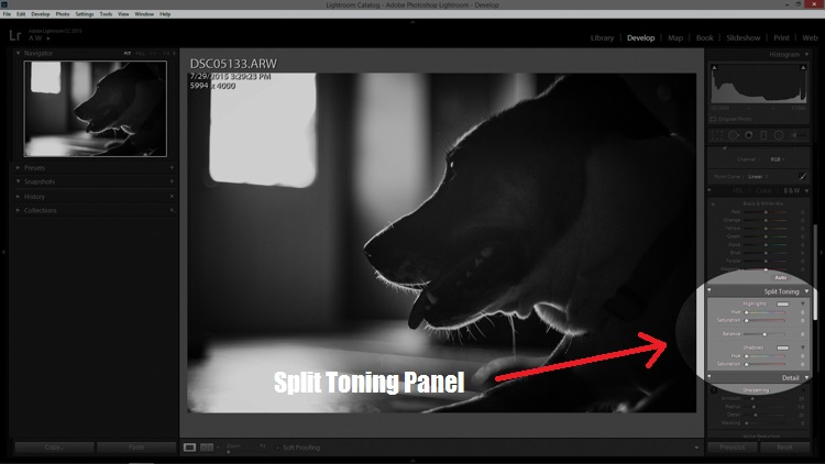 Split Tone Panel