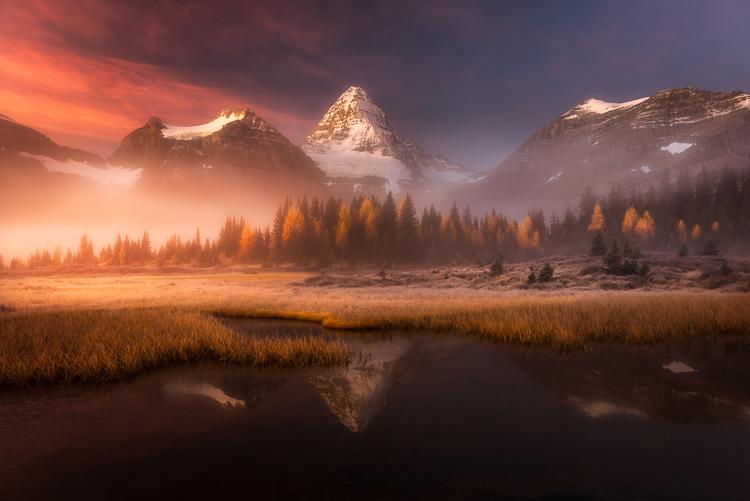 The First Dawn