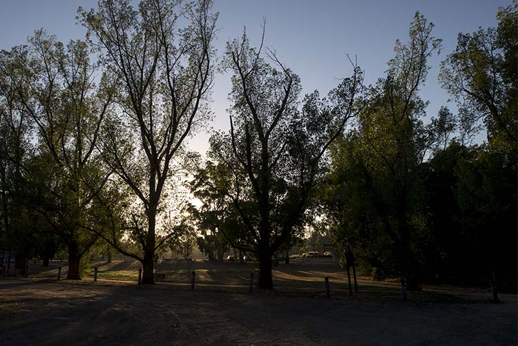 cole-landscape-photography-seasons-0009