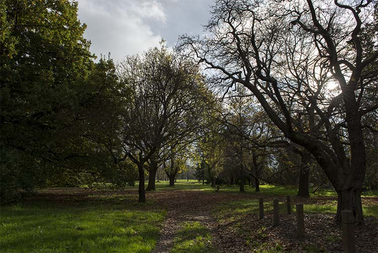 cole-landscape-photography-seasons-0010