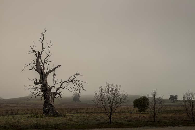 cole-landscape-road-side-photography-0002