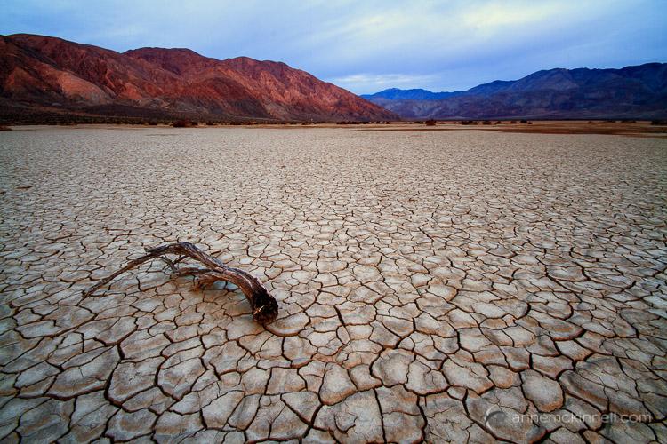 Clark Dry Lake by Anne McKinnell