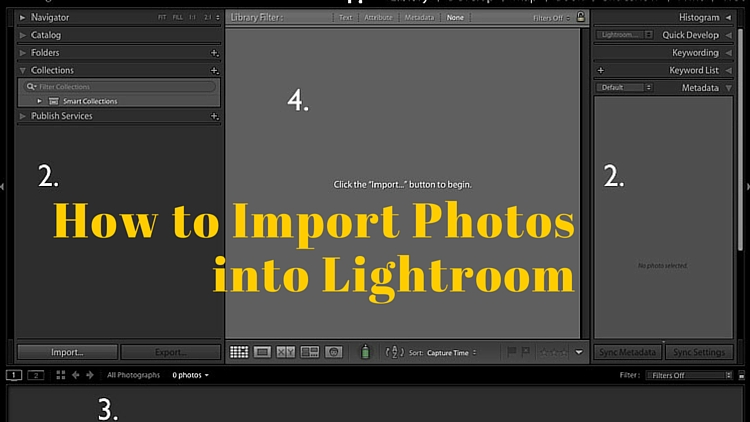 How to Import Photos into Lightroom