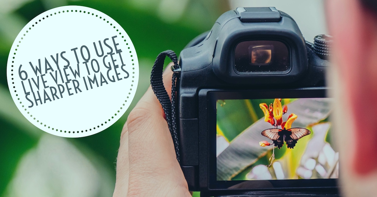 6 Ways to Use Live View to Get Sharper Images